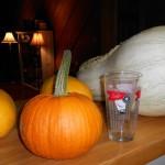 Tennessee sweet potato pumpkin...